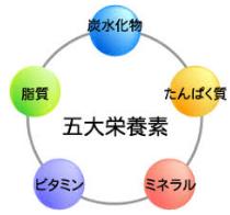 栄養フルコース型